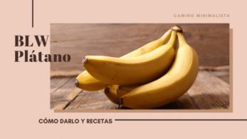 BLW - Plátano
